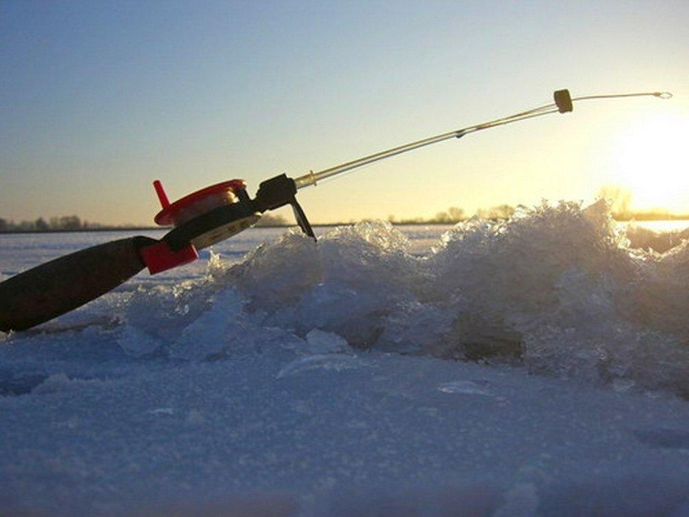 рыбалка в борзе