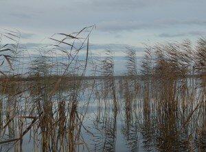таволжан озеро1